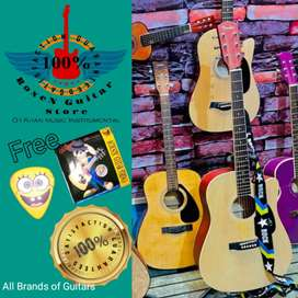 Branded Guitar,s store 20%off