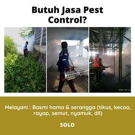 Jasa Basmi Kutu/Tungau di Solo