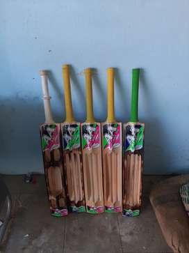 A A bats in kerala