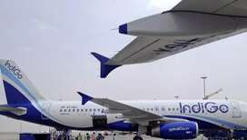 Urgent hiring ground staff indigo airlines