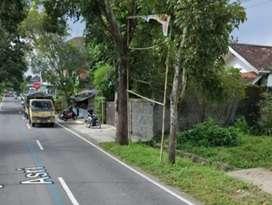 Disewakan tanah murah lokasi Gito Gati, akses jalan truk simpangan