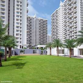 Beautifully constructed    1 BHK  Flat For Sale in  MARUNJI, Kolte Pat