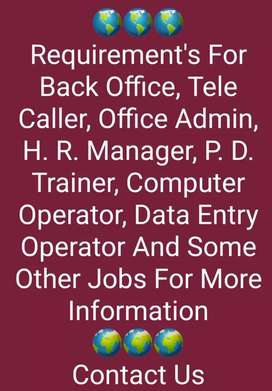 Telecaller and HR manager