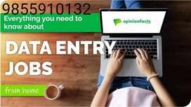 Walk in interview for backoffice,data entry,bpo/home based