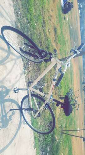 Giant Imported Cycle For SALE