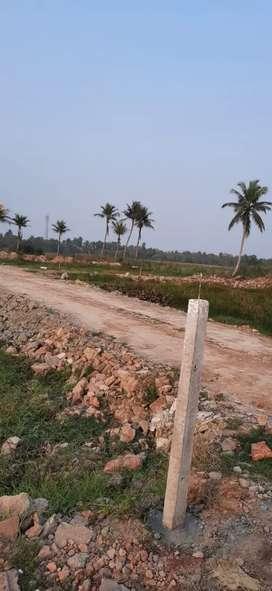 Residential Land  Plot Sale
