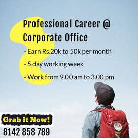 Professional Career @ Corporate Office