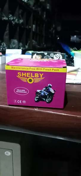 Heavy Bike Battery