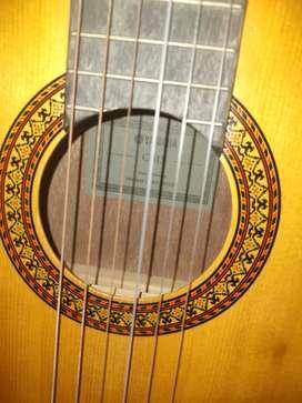 Di jual gitar C 315 original