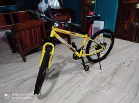 Roadeo cycle for sale