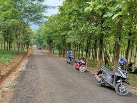 Tanah kavling Bogor termurah pinggir jalan surat SHM