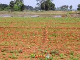 If any one need land for farming,resort and homestay in joida taluka