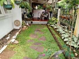 Rumah Minimalis Asri 3 Kamar Tidur Di Maleo Bintaro (1966-GB-OF)