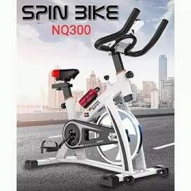 Spining NEW 2019 NQ300