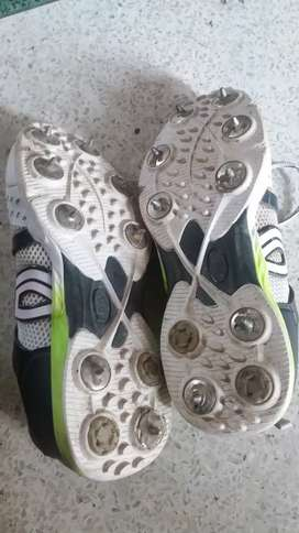 Kookaburra cricket spikes at just rupees 4000bwith iron nails