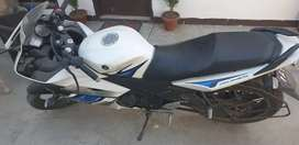 Yamaha R15 in white colour