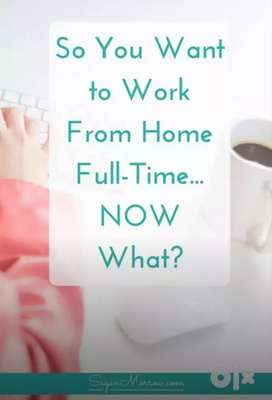 Earn money by doing Online/Offline Project works monthly
