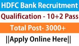 HDFC process jobs in Delhi- Janakpuri Branch - CCE & Backend Executive