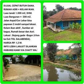 Dijual Cepat (Butuh Uang) Rumah Asri + Kolam Ikan Luas Tanah 1018m2