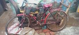 Cycle  Atlash
