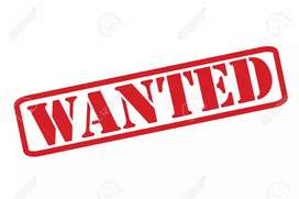 URGENT REQUIREMENT FOR DELIVERY JOB