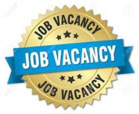2019 urgent hiring