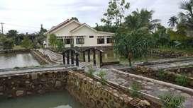 Dijual villa luas 4300m