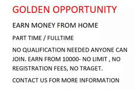 Earn money from home