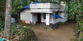 11 Cents of Land and small House 19 LAKHS Only