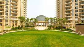 Ready to Move 3 BHK Luxury Homes for Sale, Sector 150 Noida Expressway