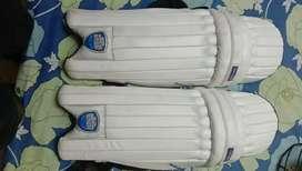 Cricket sports kit
