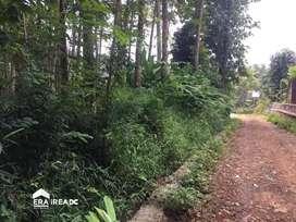 Tanah Kp Kaligetas, Mijen, Semarang