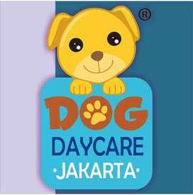KENNEL BOY UNTUK BEKERJA DI DOG DAYCARE JAKARTA
