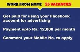 Facebook Data Entry