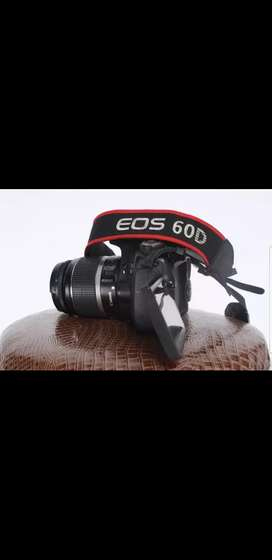 Canon 60D with 18-55mm and yougnuo 50mm 1.8
