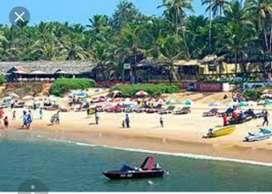 Jobs for Mumbai/Goa/Gujarat/Udaipur/