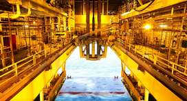 SGS Oil And Gas Industry
