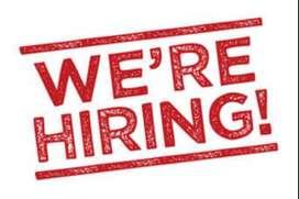 Domestic bpo hire customer care executive