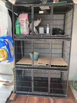 Dijual kandang kucing