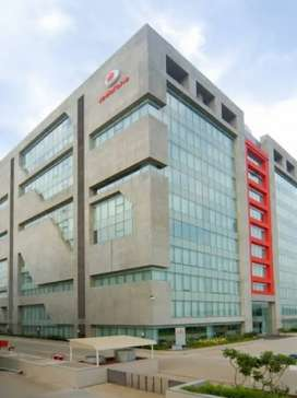 MISS SHAGUN VODAFONE HR URGENT NEED FOR COLLECTION OFFICER