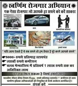 Job in government sector limited company for suratgarh & pilibanga