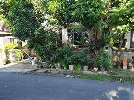 Rumah Asri Taman Griya Bali