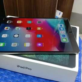 ipad pro 10.5 inch 2017 celular wifi 256 gb