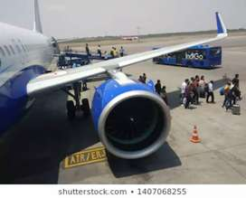 Urgently required for male or female in Indigo Airlines