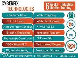 seo 6 months/weeks Industrial Training