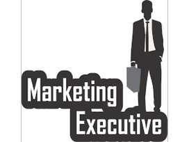 Jobs / Sales & Marketing