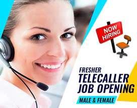 Telecaller Job Opening, Hindi and English both lang