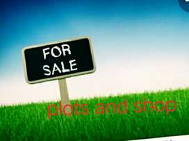 Shop for sale at 900000  and plot at 470000 for sale at LAmbi road