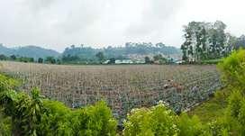 Jual Tanah dengan View Gunung Burangrang