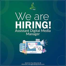 Digital Marketing Executive Assistant Manager f